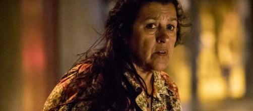 Regina Casé já tem mais de 40 anos de carreira artistica. (Arquivo Blasting News)