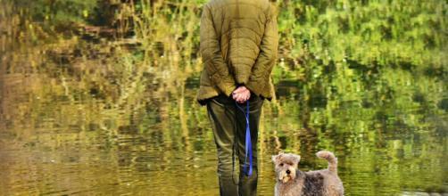 Doit-on prendre un animal de compagnie quand on est une personne âgée - Photo Pixabay