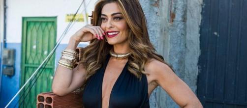 Globo define 'A Força do Querer' como substituta de 'Fina Estampa'. ( Divulgação: Rede Globo)