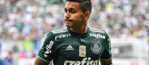 Dudu deixa o Palmeiras, mas enche o bolso alviverde. (Arquivo Blasting News)