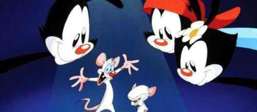 Animaniacs e Pinky e Cérebro, estão entre os principais desenhos animados produzidos por Steven Spielberg. (Arquivo Blasting News)