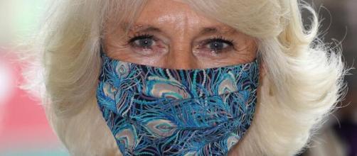 Camilla Parker Bowles repitió look y lució un particular regalo de ... - infobae.com