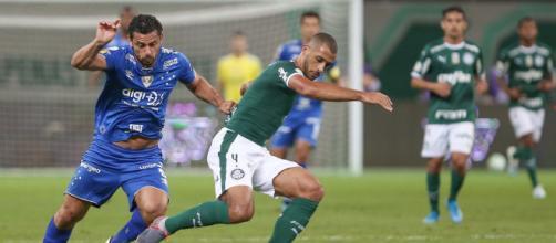 Cruzeiro e Palmeiras são dois clubes brasileiros fundados por imigrantes italianos. (Arquivo Blasting News)