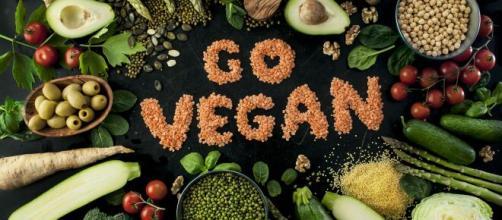 O veganismo é uma saída para o consumo desenfreado de carne. (Arquivo Blasting News)