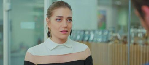 Erkenci Kuş, spoiler turchi: Leyla si innamora del fratello di Can.