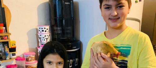 Família comprou galo e galinha de estimação para o filho autista. (Reprodução/Arquivo Pessoal)