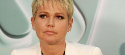 Xuxa apoiou Felipe Neto, alvo de ameaças. (Arquivo Blasting News)
