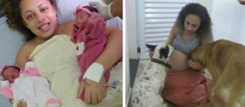 Gemelline di 26 giorni hanno perso la vita a causa delle ferite riportate dai morsi del loro cane.