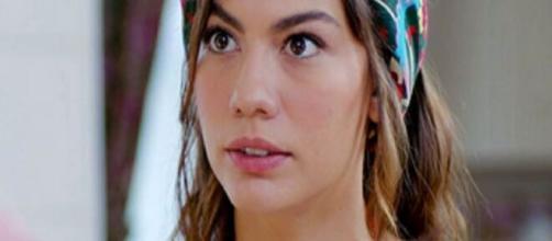 DayDreamer, trame turche: Can vuole far sapere a Nihat e Mevkibe che lui e Aydin si amano.