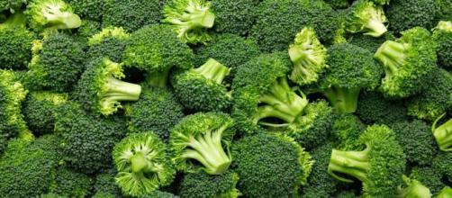 Brócolis é indispensável para quem deseja ganhar massa muscular. (Arquivo Blasting News)