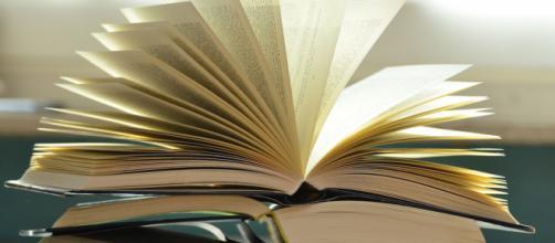 Rentrée littéraire 2020 : 7 livres attendus en librairie