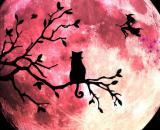 L'oroscopo di domani 7 agosto e classifica, 1ª sestina: Luna in Ariete e Venere in Cancro.