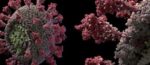 Coronavirus, dati dal mondo: oltre 200.000 decessi in Sud America, lockdown in Libia.