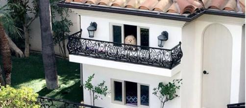 Así es la increíble mansión que Paris Hilton creó para sus perros