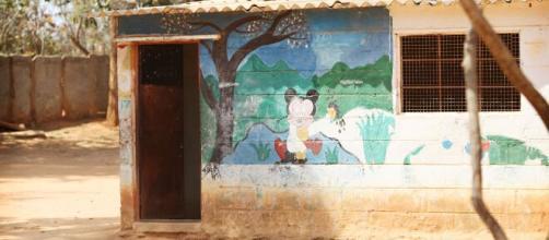 Escuelas convertidas en gallineros en Kenia