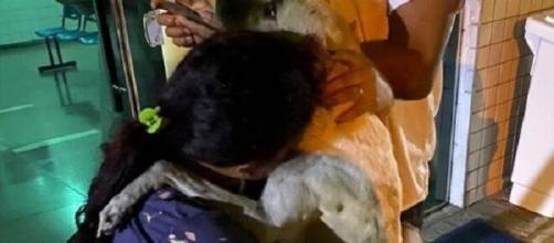 Mulher adota cachorro que a consolou. (Arquivo pessoal)