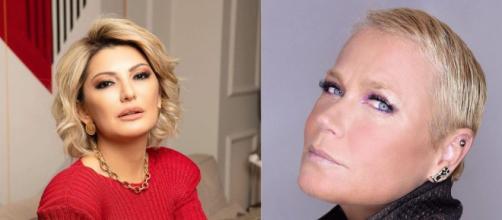 Após briga com Xuxa, Antonia Fontenelle quer se tornar 'rainha dos baixinhos'. (Arquivo Blasting News)