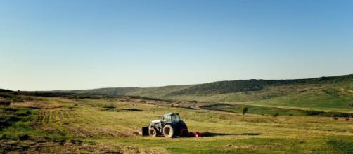 Benefício do auxílio emergencial de R$ 600 para agricultores segue para sanção. (Arquivo Blasting News)