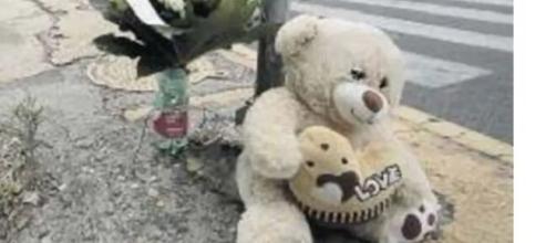 Napoli, la notte dell'8 agosto Maya ha perso la vita investita da un'auto.