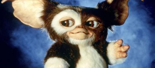 A franquia 'Gremlins' fez muito sucesso nas décadas de 80 e 90 nos cinemas. (Arquivo Blasting News)