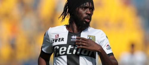 Interessamento dell'Inter per Gervinho del Parma.