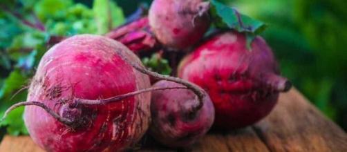 A beterraba é um bom exemplo de alimento vasodilatador. (Arquivo Blasting News)