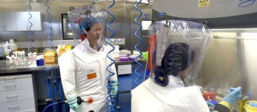 Aportan las pruebas sobre el origen artificial del coronavirus