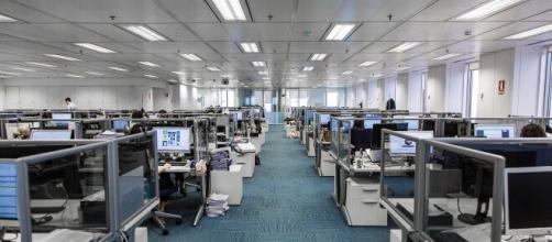 La persona contratada dependerá de la Dirección General y será el máximo responsable del departamento de Recursos Humanos de Deloitte.