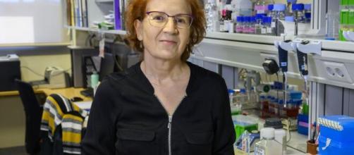 Margarita del Val predice un mal futuro para los jóvenes si no se frena el coronavirus.