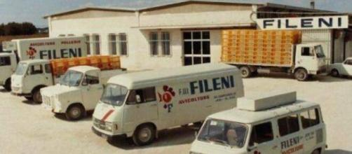 Assunzioni nell'azienda avicola Fileni.
