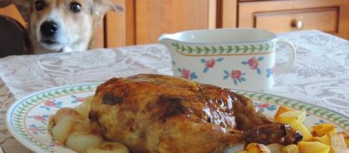 Pollo farcito al forno, una prelibatezza per le feste.