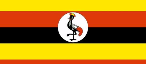 An illustration of the Ugandan Flag. [Image via OpenClipart-Vectors - Pixabay]
