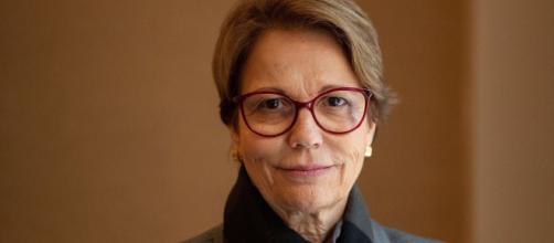 Ministra da Agricultura, Tereza Cristina afirma que não faltará arroz no Brasil. (Arquivo Blasting News)
