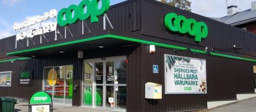 Assunzioni Coop: posizioni aperte per addetti vendite, stagisti anche senza esperienza.
