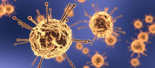 La ivermectina sería un posible aliado en la lucha para frenar la pandemia causada por el coronavirus