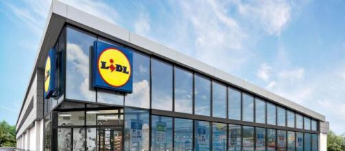 Assunzioni Lidl: selezioni per assistenti vendita e operatori di filiale.
