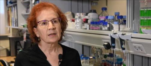 """Margarita del Val advierte que la vacuna contra el virus """"no protege de la infección"""""""