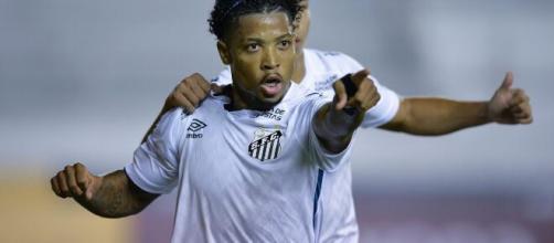 Santos, na Libertadores, ainda está cauteloso com a escalação, enquanto o Palmeiras fala em utilizar 'força máxima'. (Arquivo Blasting News)