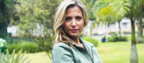 Luisa Mell é apresentadora e ativista da causa animal. (Arquivo Blasting News)