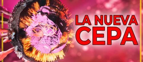 Sanidad advierte sobre la progresión de la cepa inglesa del virus en algunas partes de España