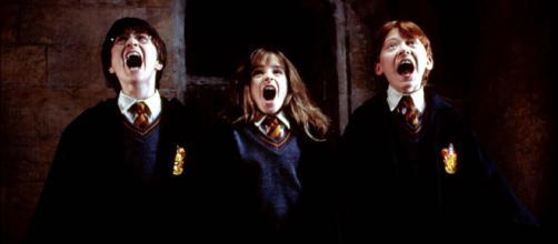 Une série sur Harry Potter serait en cours de développement. © Warner Bros.