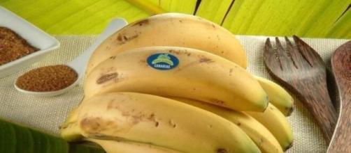 Plátano de Canarias se dirige a los 'youtubers' regalándoles plátanos si vuelven de Andorra