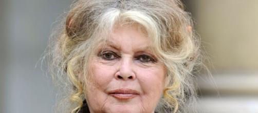 Brigitte Bardot ha dado una polémica opinión sobre el coronavirus