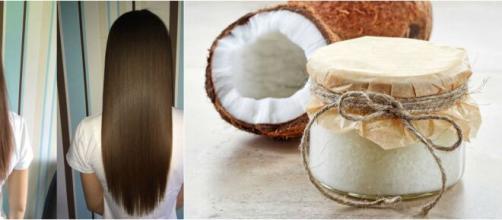 Aceite de coco, el mejor aliado para el cabello