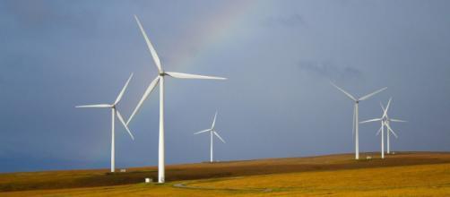 Numero verde Controcorrente Energia: come contattare l'assistenza clienti.