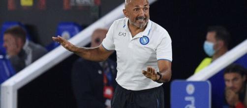 Spalletti, allenatore del Napoli.
