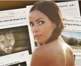 Las portadas de multitud de periódicos recogieron la noticia de la madre que salvó a su hijo del araaje del felino - Collage RRSS