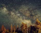 Previsioni astrologiche del 21 ottobre: Toro fortunato, Bilancia energica.