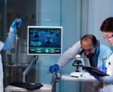 El riñón de cerdo fue trasplantado en una persona con muerte cerebral (freepik)