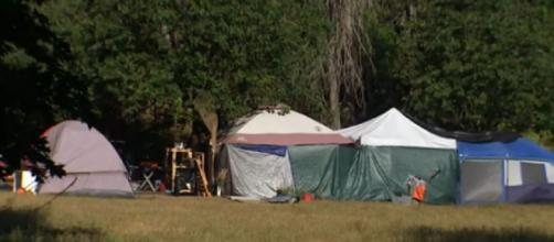 Homeless camp near Seattle's Green Lake has neighbors concerned (Image source: King 5/YouTube)
